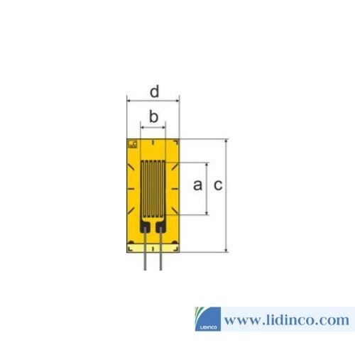 Cảm biến đo biến dạng LY Strain Gauges HBM 1 lưới đo